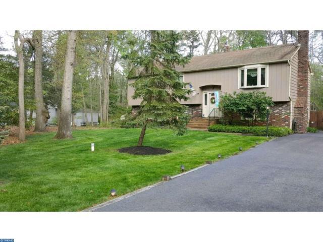 17 Robbins Way, Southampton, NJ 08088 (MLS #6907843) :: The Dekanski Home Selling Team