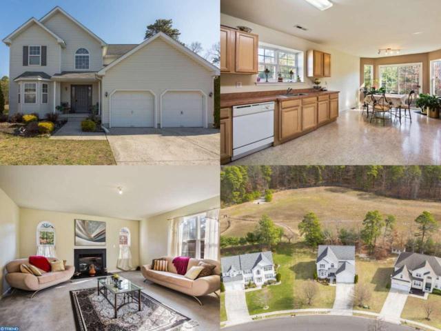 928 Dartmoor Avenue, Williamstown, NJ 08094 (MLS #6936425) :: The Dekanski Home Selling Team