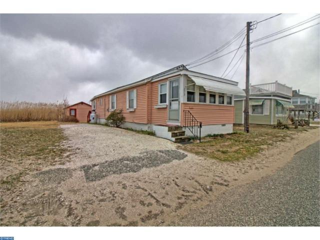 273 New Jersey Avenue, Fortescue, NJ 08321 (MLS #6939385) :: The Dekanski Home Selling Team