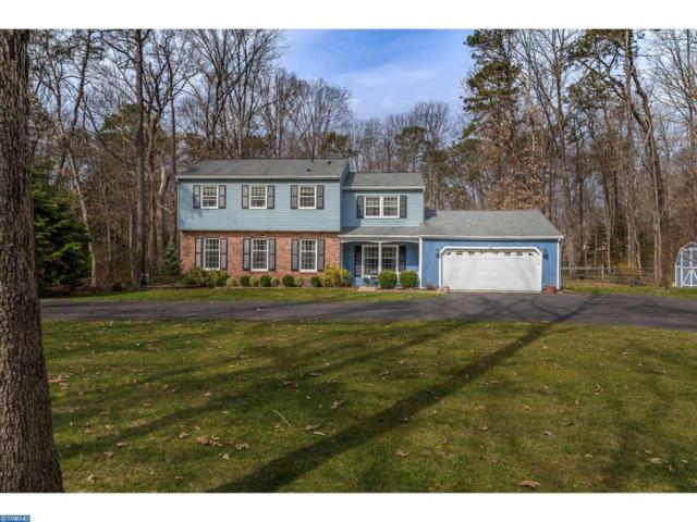 102 Nanticoke Trail, Shamong, NJ 08088 (MLS #6952604) :: The Dekanski Home Selling Team