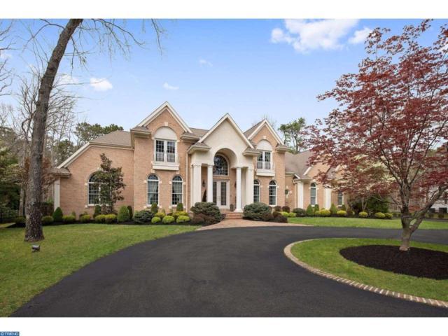 6 Elderberry Drive, Medford, NJ 08055 (MLS #6966789) :: The Dekanski Home Selling Team