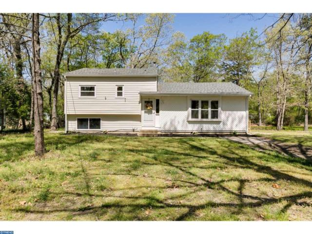 213 Cushman Avenue, Collings Lake, NJ 08094 (MLS #6975139) :: The Dekanski Home Selling Team