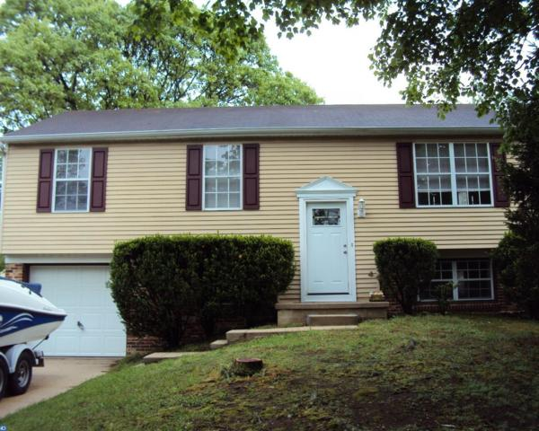 8318 Collins Avenue, Pennsauken, NJ 08109 (MLS #6977664) :: The Dekanski Home Selling Team