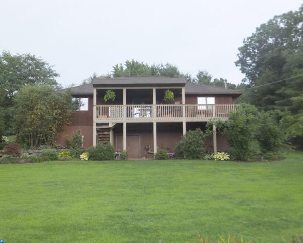 40 Phaons Road, Pine Grove, PA 17963 (#6978537) :: Ramus Realty Group