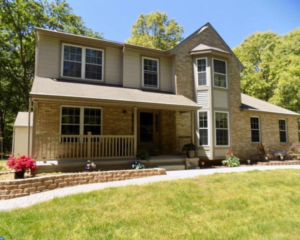 28 Fox Run Drive, Elmer, NJ 08318 (MLS #6978674) :: The Dekanski Home Selling Team