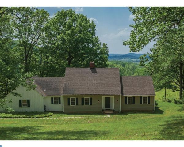 163 Pleasant Valley Road, Titusville, NJ 08560 (MLS #6989059) :: The Dekanski Home Selling Team