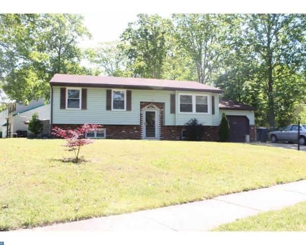 1602 Red Oak Road, Williamstown, NJ 08094 (MLS #6990054) :: The Dekanski Home Selling Team