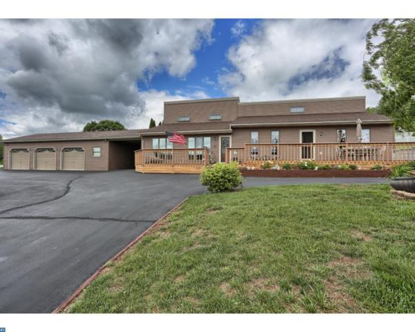 1925 Wynonah Drive, Auburn, PA 17922 (#6990817) :: Ramus Realty Group