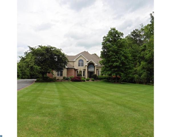 10 Cheyenne Drive, Hopewell, NJ 08534 (MLS #6992168) :: The Dekanski Home Selling Team