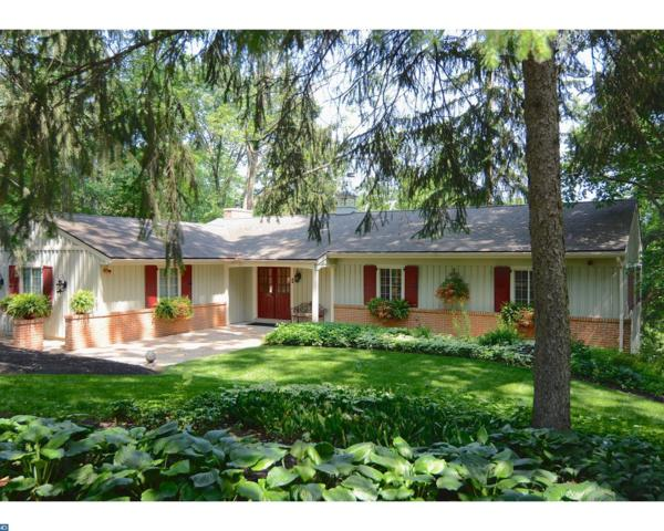 110 Clubhouse Drive, Bernville, PA 19506 (#6997519) :: Ramus Realty Group