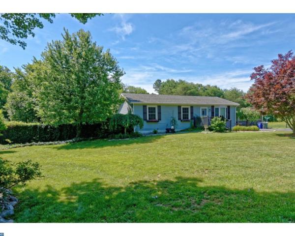 4828 Lake Road, Newfield, NJ 08344 (MLS #6999175) :: The Dekanski Home Selling Team