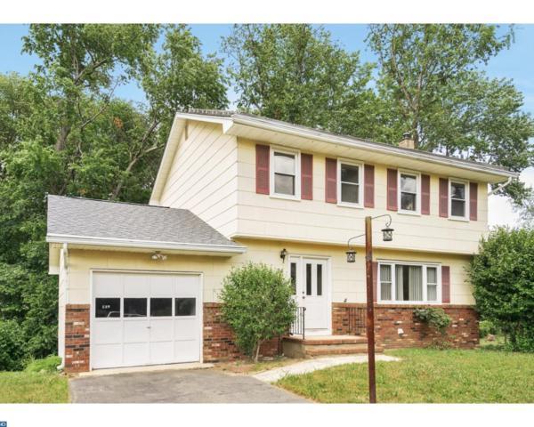 74 Knapp Avenue, Hamilton Township, NJ 08610 (MLS #7002282) :: The Dekanski Home Selling Team