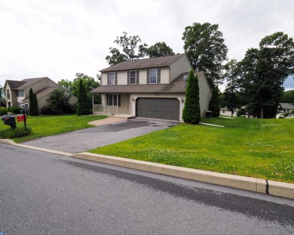46 Kelsey Drive, Schuylkill Haven, PA 17972 (#7004596) :: Ramus Realty Group