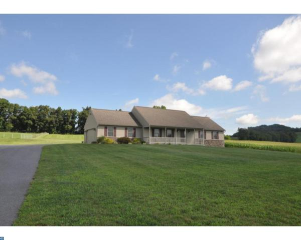 4371 Irish Creek Road, Bernville, PA 19506 (#7006285) :: Ramus Realty Group