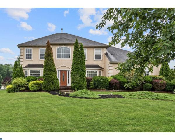 176 Alyssa Drive, Mount Royal, NJ 08061 (MLS #7011988) :: The Dekanski Home Selling Team