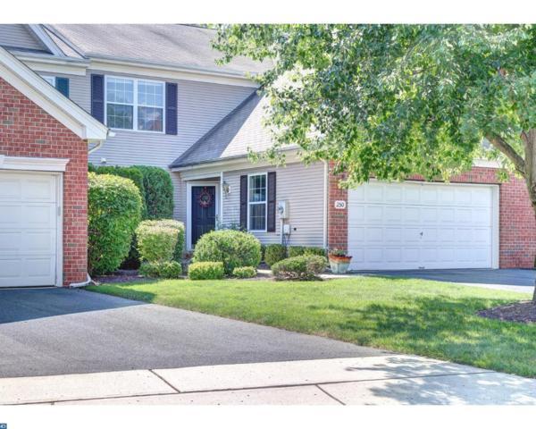 250 Colt Street, Hopewell, NJ 08534 (MLS #7030356) :: The Dekanski Home Selling Team