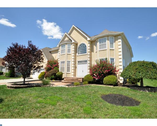 120 Golden Meadow Lane, Winslow, NJ 08081 (MLS #7036077) :: The Dekanski Home Selling Team