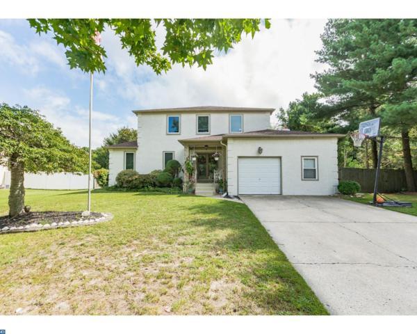 113 Dorado Avenue, Sewell, NJ 08080 (MLS #7036507) :: The Dekanski Home Selling Team