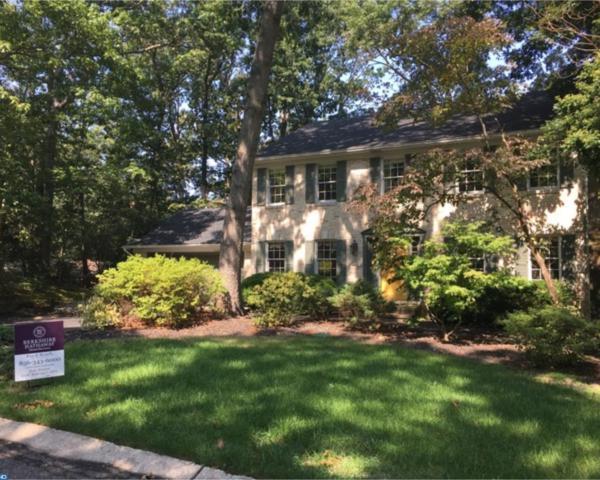 14 Shadow Brooke Drive, Upper Deerfield, NJ 08302 (MLS #7041563) :: The Dekanski Home Selling Team