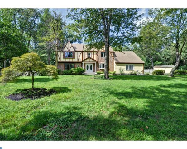 1 Teak Lane, Princeton, NJ 08540 (MLS #7043391) :: The Dekanski Home Selling Team