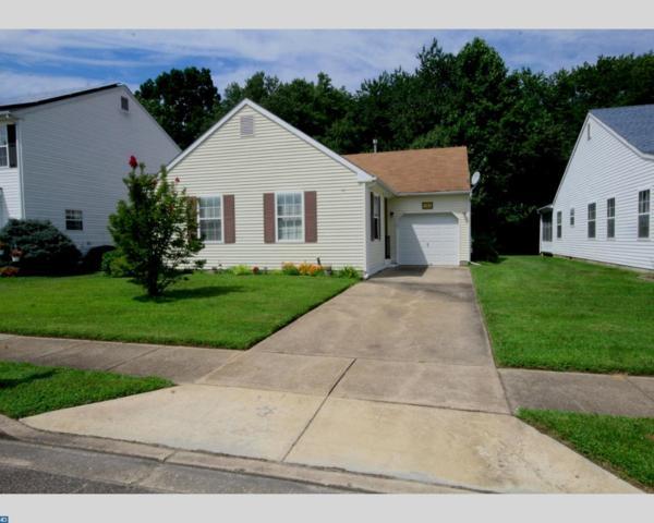 733 Trinidad Boulevard, Williamstown, NJ 08094 (MLS #7046317) :: The Dekanski Home Selling Team