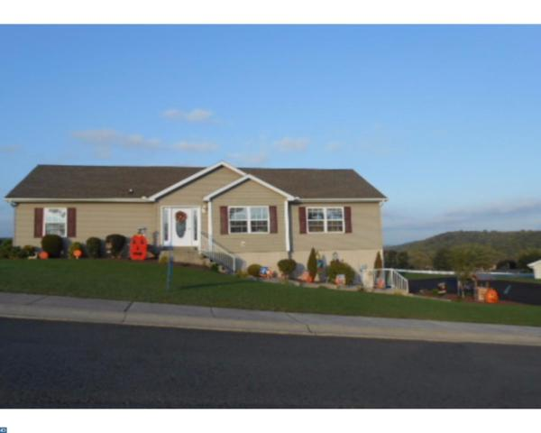 103 Hillside Vista Drive, Pine Grove, PA 17963 (#7068599) :: Ramus Realty Group