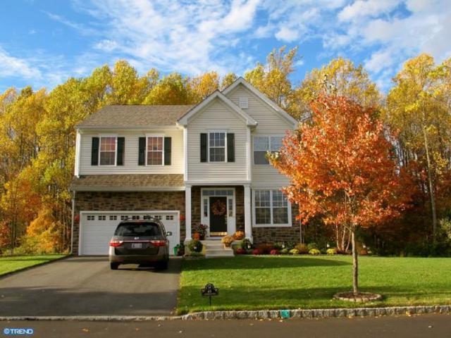 61 Homestead Drive, Pemberton Twp, NJ 08068 (MLS #7077844) :: The Dekanski Home Selling Team