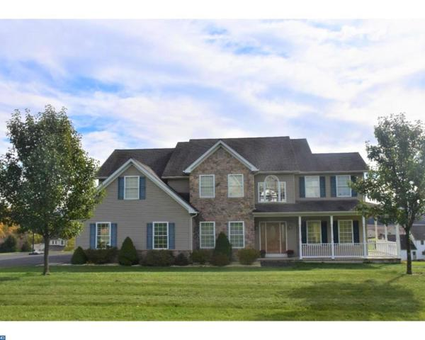 152 Rolling View Drive, Schuylkill Haven, PA 17972 (#7082986) :: Ramus Realty Group
