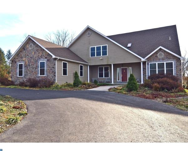 547 Scenic Drive, Bernville, PA 19506 (#7090715) :: Ramus Realty Group