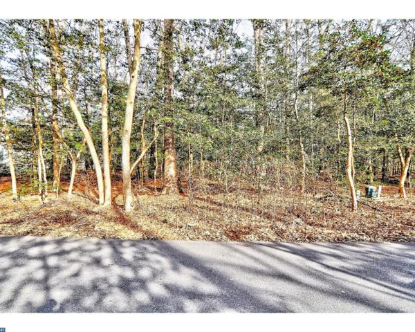 17 Holly Oak Lane, Lewes, DE 19958 (MLS #7102715) :: RE/MAX Coast and Country