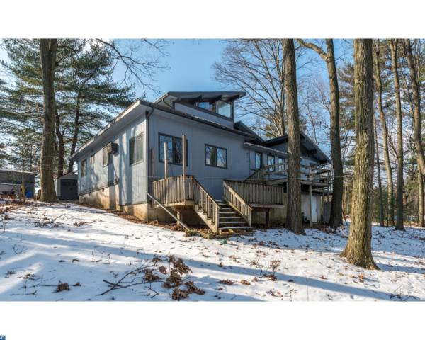 517 Coyote Drive, Auburn, PA 17922 (#7103606) :: Ramus Realty Group