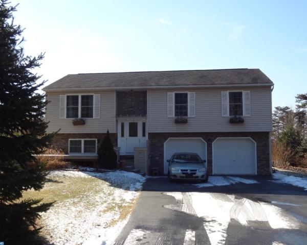 557 Coyote Drive, Auburn, PA 17922 (#7122320) :: Ramus Realty Group