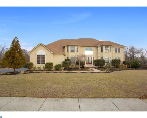 204 Silver Leaf Court, Gloucester County, NJ 08062 (#7123167) :: REMAX Horizons