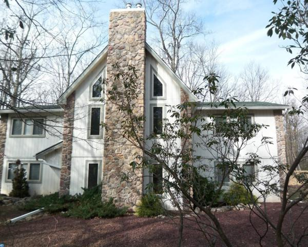 351 Moseywood Road, Lake Harmony, PA 18624 (#7124598) :: Erik Hoferer & Associates