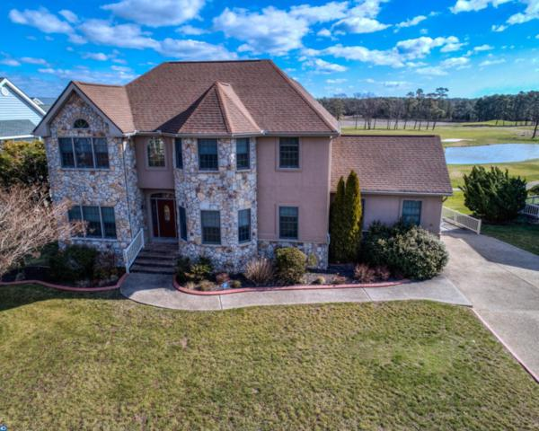 29373 Turnberry Drive, Dagsboro, DE 19939 (#7140356) :: RE/MAX Coast and Country