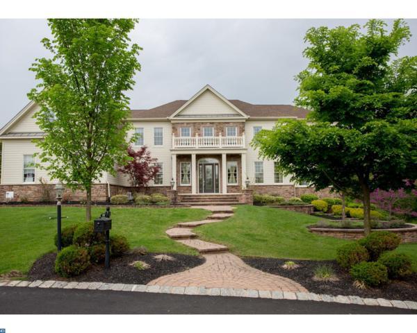 2739 Norfolk Lane, Doylestown, PA 18901 (#7150047) :: REMAX Horizons
