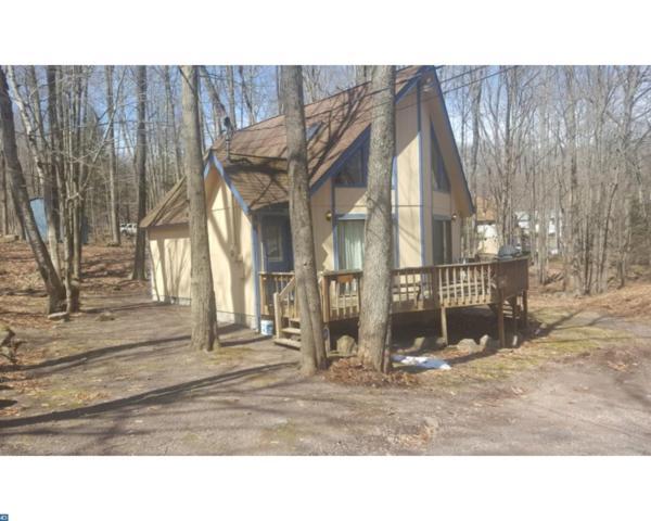 184 Comanche Trail #1, Pocono Lake, PA 18347 (#7151030) :: REMAX Horizons