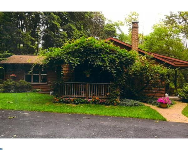 623 Summer Mountain Road, Bernville, PA 19506 (#7151613) :: Ramus Realty Group