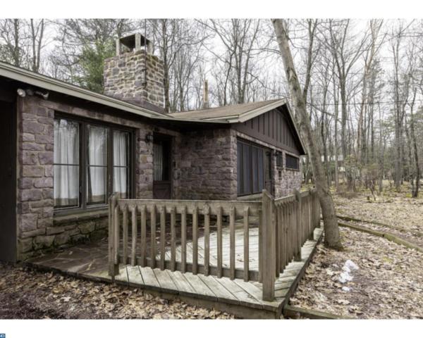 11 Red Oak Road, Lake Harmony, PA 18624 (#7154153) :: Erik Hoferer & Associates