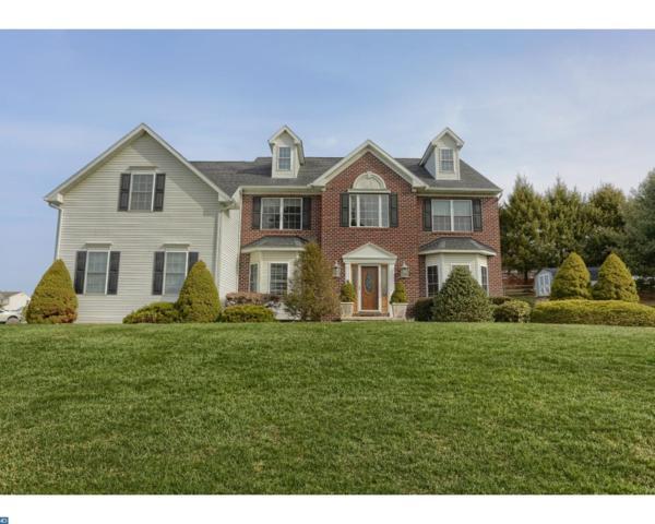 3 Dogwood Drive, Bernville, PA 19506 (#7159053) :: Ramus Realty Group