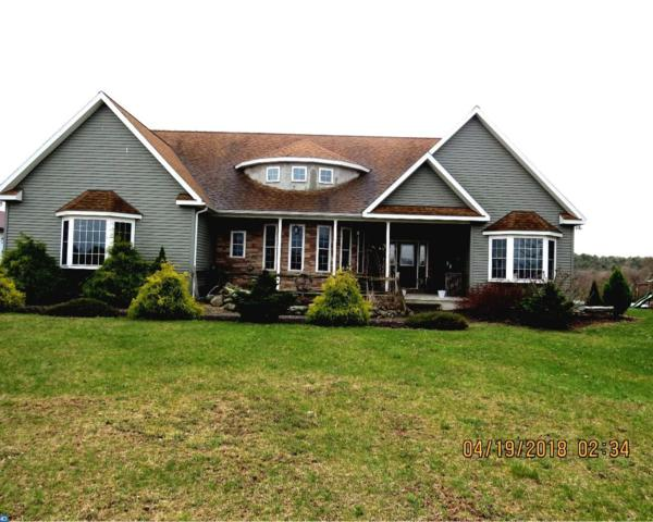 240 Long Stretch Road, Pine Grove, PA 17963 (#7165011) :: Ramus Realty Group
