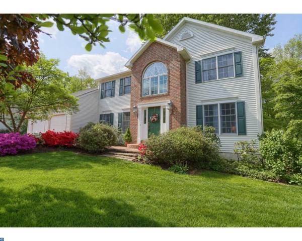 317 Grande Valley Road, Reading, PA 19606 (#7171037) :: REMAX Horizons