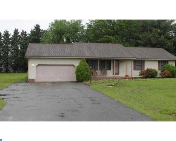 331 Doctor Smith Road, Harrington, DE 19952 (#7184231) :: REMAX Horizons