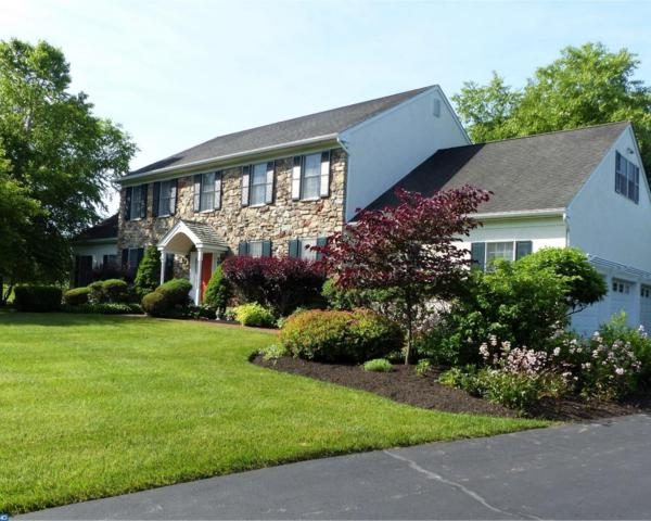 4 Brendon Knoll, Solebury, PA 18902 (#7201577) :: The Kirk Simmon Team