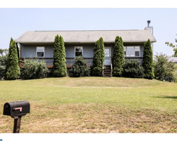 1191 Wynonah Drive, Auburn, PA 17922 (#7217264) :: Ramus Realty Group
