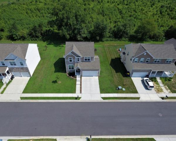 74 Talley Drive, Smyrna, DE 19977 (#7234815) :: The Team Sordelet Realty Group