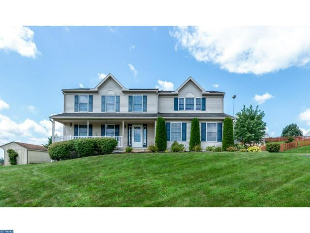 39 Walnut Dr E, Bernville, PA 19506 (#7245788) :: Ramus Realty Group