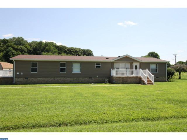 480 Andrews Lake Road, Felton, DE 19943 (#7254744) :: REMAX Horizons