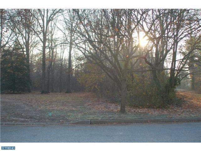 Lot 27 N River Drive, Pennsville, NJ 08070 (MLS #6139684) :: The Dekanski Home Selling Team