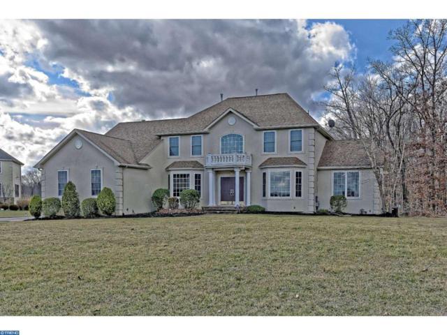 206 Black Hoof Trail, Franklinville, NJ 08322 (MLS #6915769) :: The Dekanski Home Selling Team
